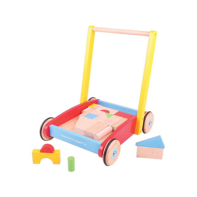 Big Jigs Baby Walker With Bricks