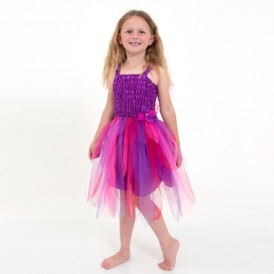 Lucy Locket Carnival Fairy Dress Berry